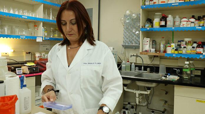 La científica coameña Idhaliz Flores Caldera y su equipo trabaja en un método no invasivo para detectar la endometriosis. (Voces del Sur / Pedro A. Menéndez Sanabria)
