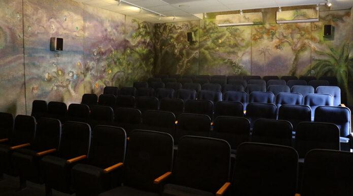Cine Solar de Casa Pueblo, en Adjuntas. (Voces del Sur)