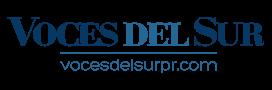 Voces del Sur logo