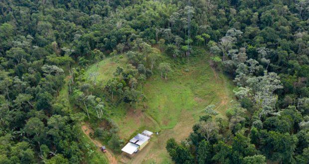 Bosque Escuela Ariel Massol Deyá en Adjuntas. (Suministrada)